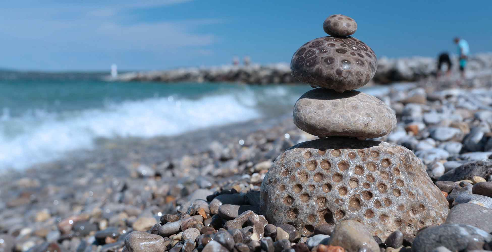 Petoskey Stones on West Michigan beach
